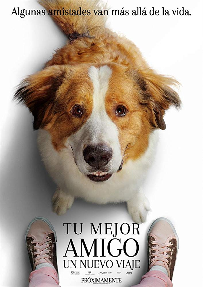 Watch Movie A Dogs Journey