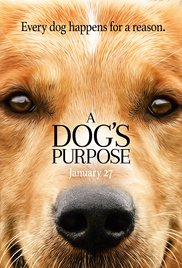 Watch Movie A Dog's Purpose