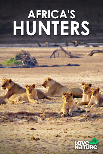 Watch Movie Africa's Hunters - Season 3