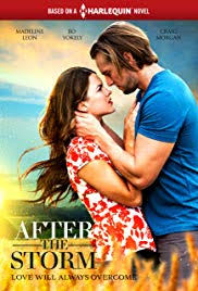 Watch Movie After the Storm (2019)