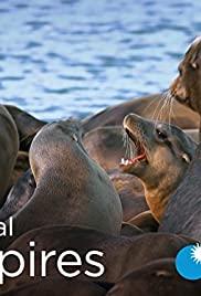 Watch Movie Animal Empires - Season 1