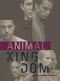Watch Movie Animal Kingdom - Season 2