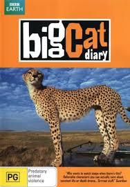 Watch Movie Big Cat Diary - Season 3