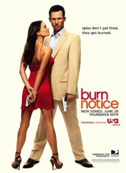 Watch Movie Burn Notice - Season 3