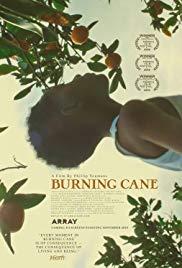 Watch Movie Burning Cane