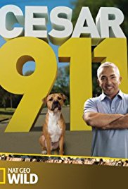 Watch Movie Cesar 911 season 4