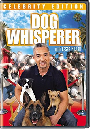 Watch Movie Dog Whisperer with Cesar Millan - Season 3