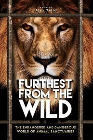 Watch Movie Furthest From The Wild