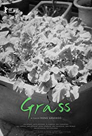 Watch Movie Grass