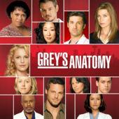 Watch Movie Grey's Anatomy - Season 4