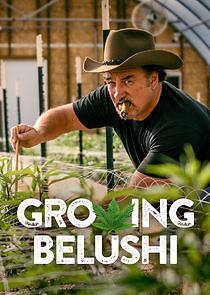 Watch Movie Growing Belushi - Season 1