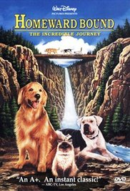 Watch Movie Homeward Bound: The Incredible Journey
