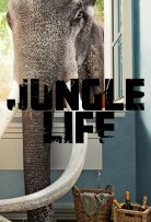 Watch Movie Jungle Life - Season 1