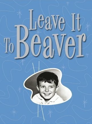 Watch Movie Leave It to Beaver - Season 3