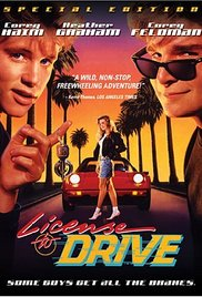 Watch Movie License to Drive