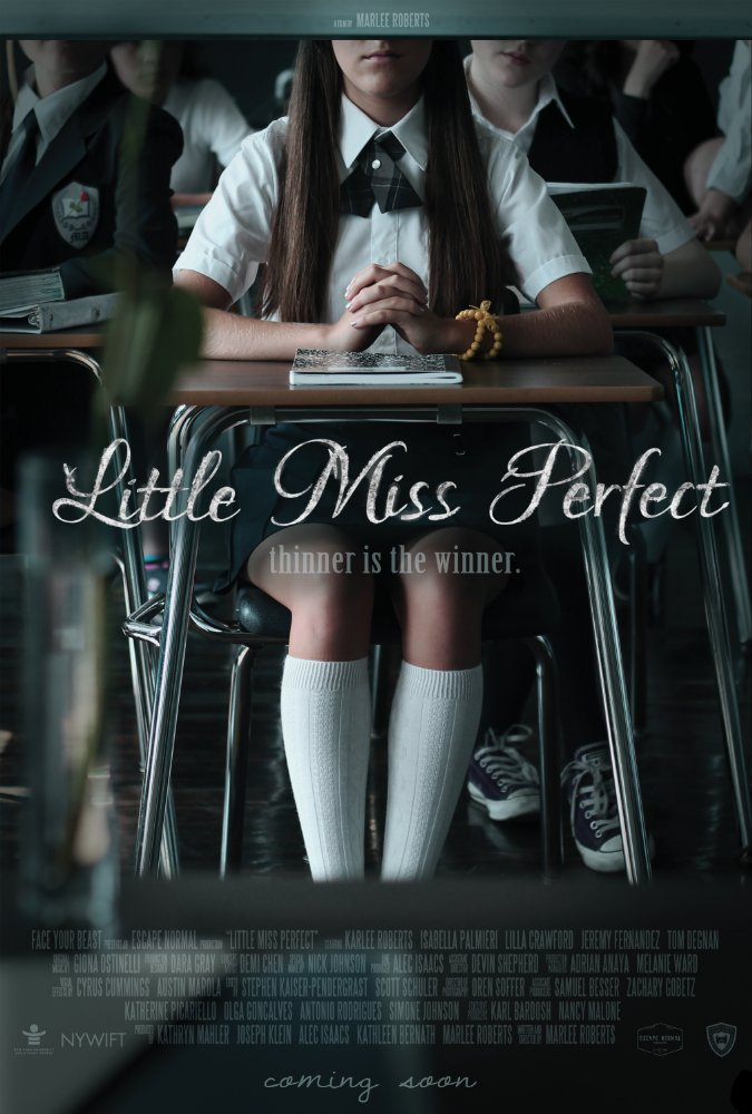 Watch Movie Little Miss Perfect