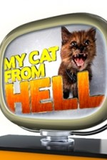 Watch Movie My Cat From Hell - Season 8