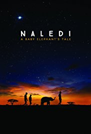 Watch Movie Naledi: A Baby Elephant's Tale