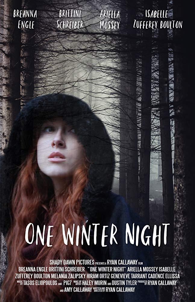 Watch Movie One Winter Night
