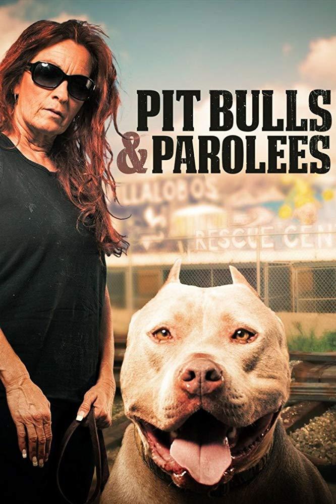 Watch Movie Pit Bulls and Parolees - Season 18