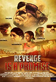 Watch Movie Revenge Is a Promise