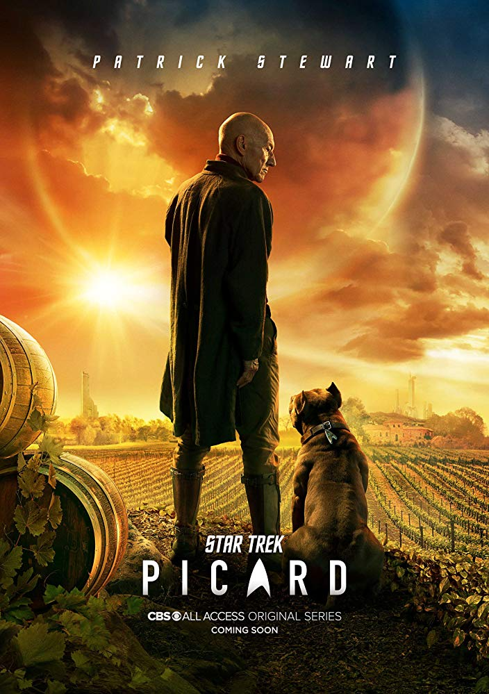 Watch Movie Star Trek: Picard - Season 1
