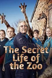 Watch Movie The Secret Life of the Zoo - Season 11