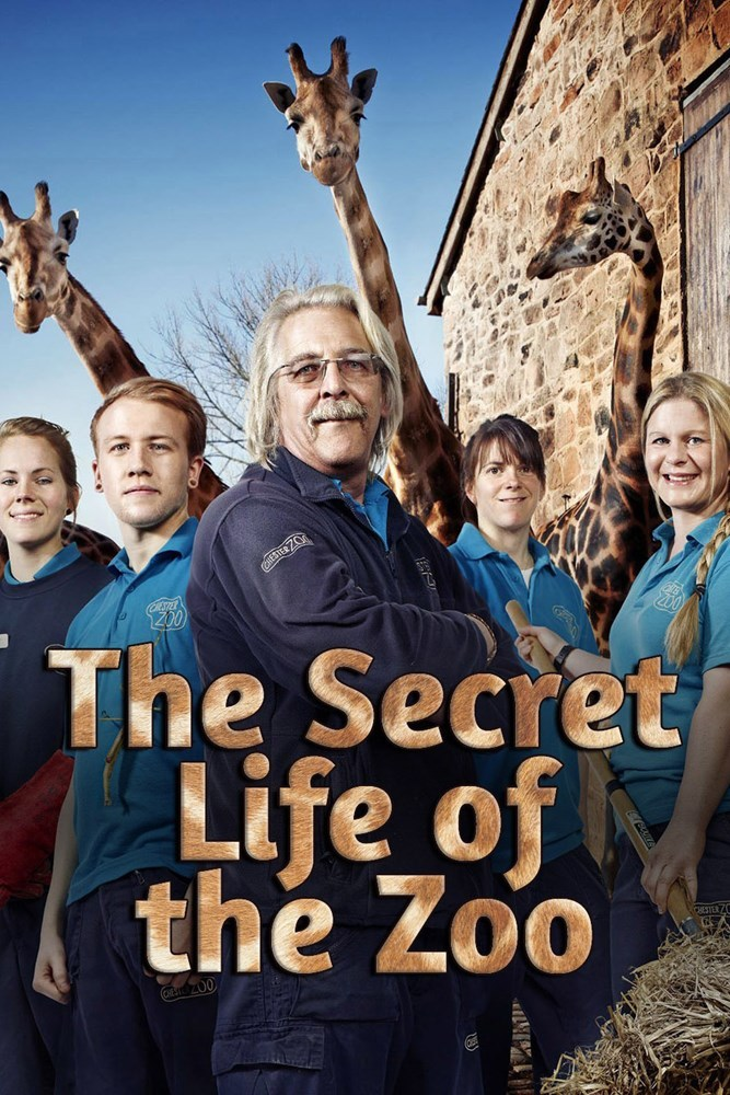 Watch Movie The Secret Life Of The Zoo - Season 2