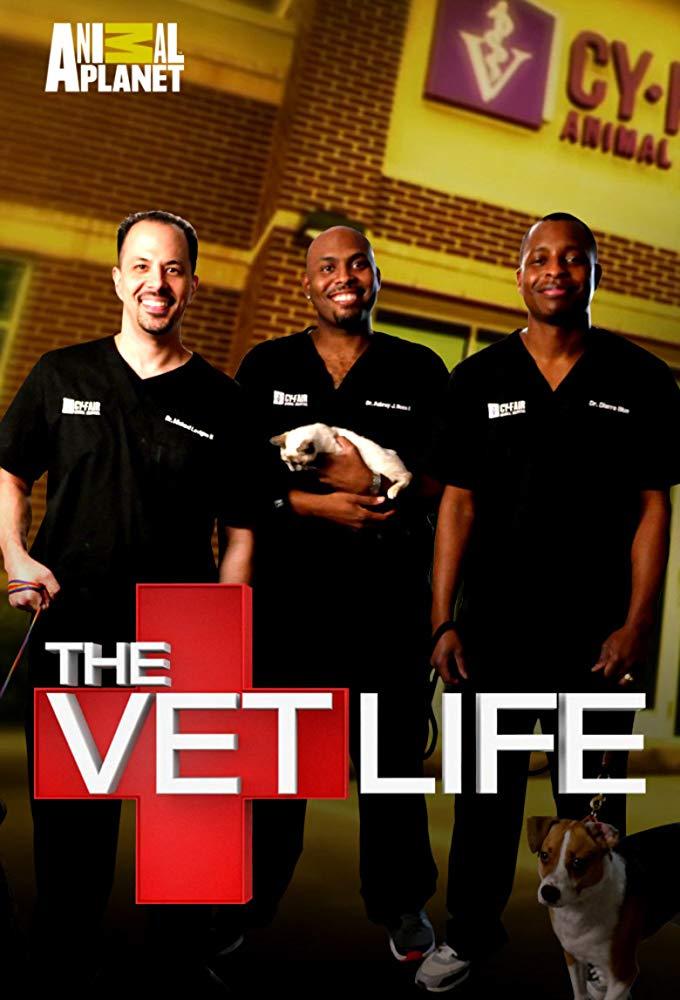 Watch Movie The Vet Life - Season 4