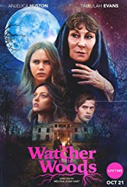 Watch Movie The Watcher in the Woods