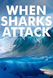 Watch Movie When Sharks Attack - Season 4