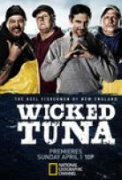 Watch Movie Wicked Tuna - Season 8